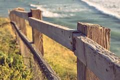 Coastal fence ~ HFF    [Explore]