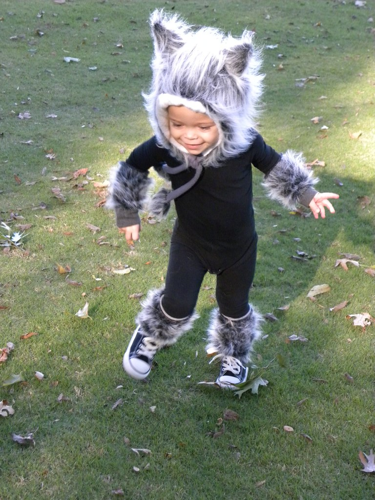 Baby Wolf Costume | Full wolf custom order for a Halloween ...