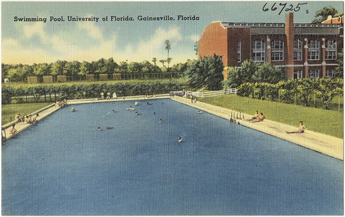 Swimming Pool University Of Florida Gainesville Florida Flickr