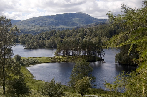 Tarn Hows | by Patrick Costello