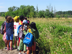 Group of children looking for birds across a field at Ridgefield National Wildlife Refuge.