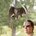 Australian Snooty(?) Owl