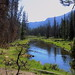 North Inlet Creek Along North Inlet Trail in Rocky Mountain National Park - Northeast of Grand Lake, Colorado
