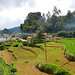 Glimpse of Ooty