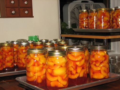 35 more quarts of peaches | by christmasnotebook
