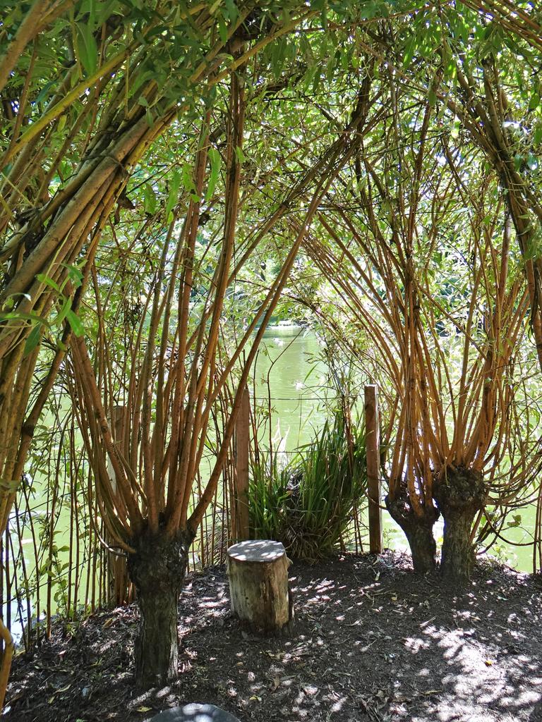Le Jardin Des Plantes Nantes Espace De Cr Ation De Kinya Flickr