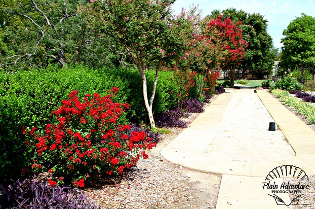 ... Will Rogers Park | By Plain Adventure