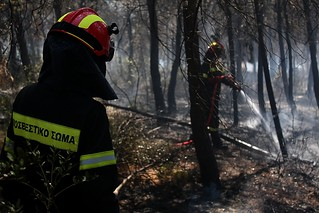 Greek fire fighters dealing with forest fire in Thessaloniki. | by Teacher Dude's BBQ