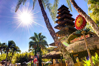 The Tiki Room - Under Old Management | by Brendan Meier