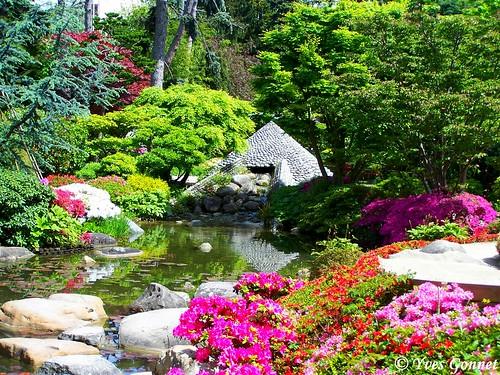Jardin japonais parc albert kahn boulogne billancourt p flickr - Jardin d eveil boulogne billancourt ...
