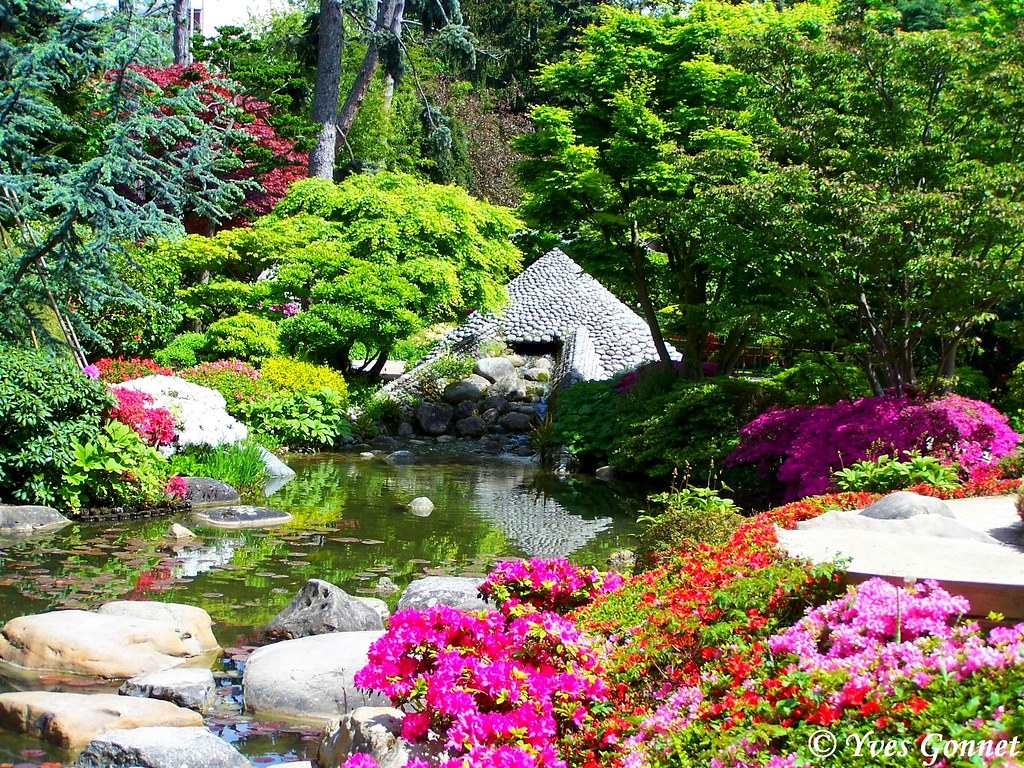 Jardin japonais parc albert kahn boulogne billancourt p - Table jardin soldee boulogne billancourt ...