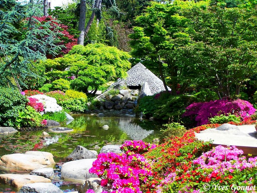 Jardin japonais parc albert kahn boulogne billancourt p - Castorama deco jardin boulogne billancourt ...