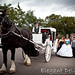 Ana Victoria Quince Carriage