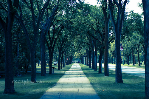 Walk In The Park | by John Winston Ivy