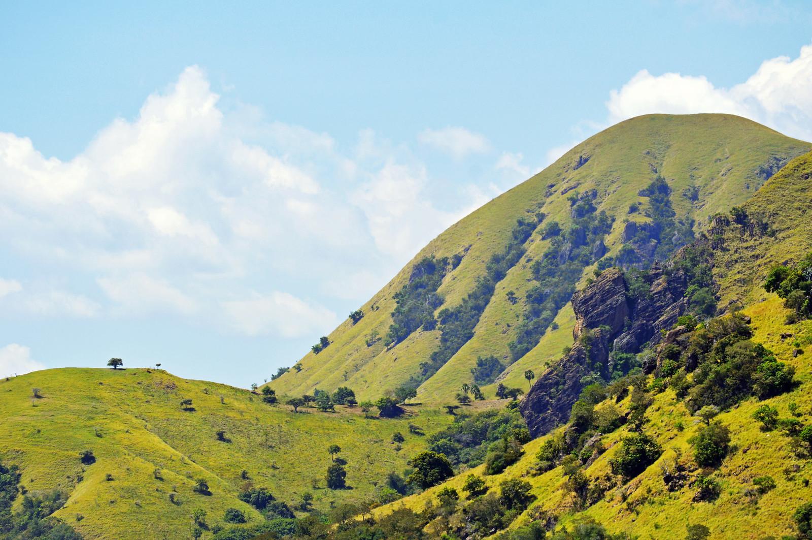 The landscape of Komodo National park.