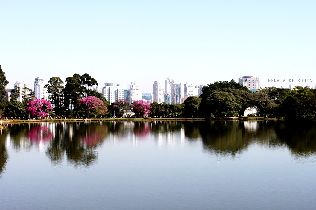 01.07.12 - Parque do Ibirapuera # São Paulo/SP