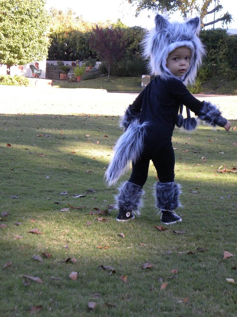 Baby Wolf Costume | Fu...