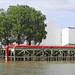 Serpentine rouge (Estuaire, Indre)