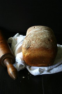 Fresh Baked Honey Wheat Bread | by Beth Kirby | {local milk}