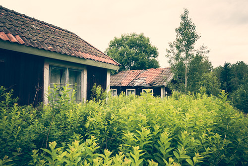 Abandoned summer cottage | by netzanette