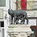 Romania-1194 - She-wolf Statue in Romania!!!!!!