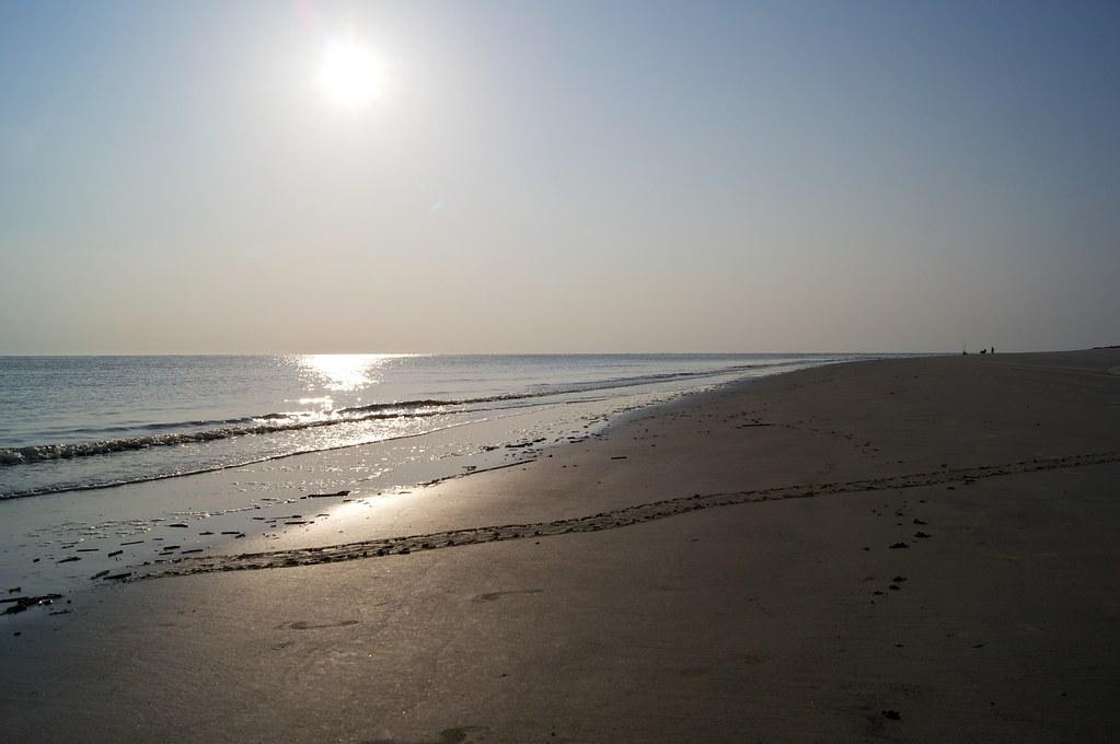 Turtle Beach P Ps Anschlie Ef Bf Bden