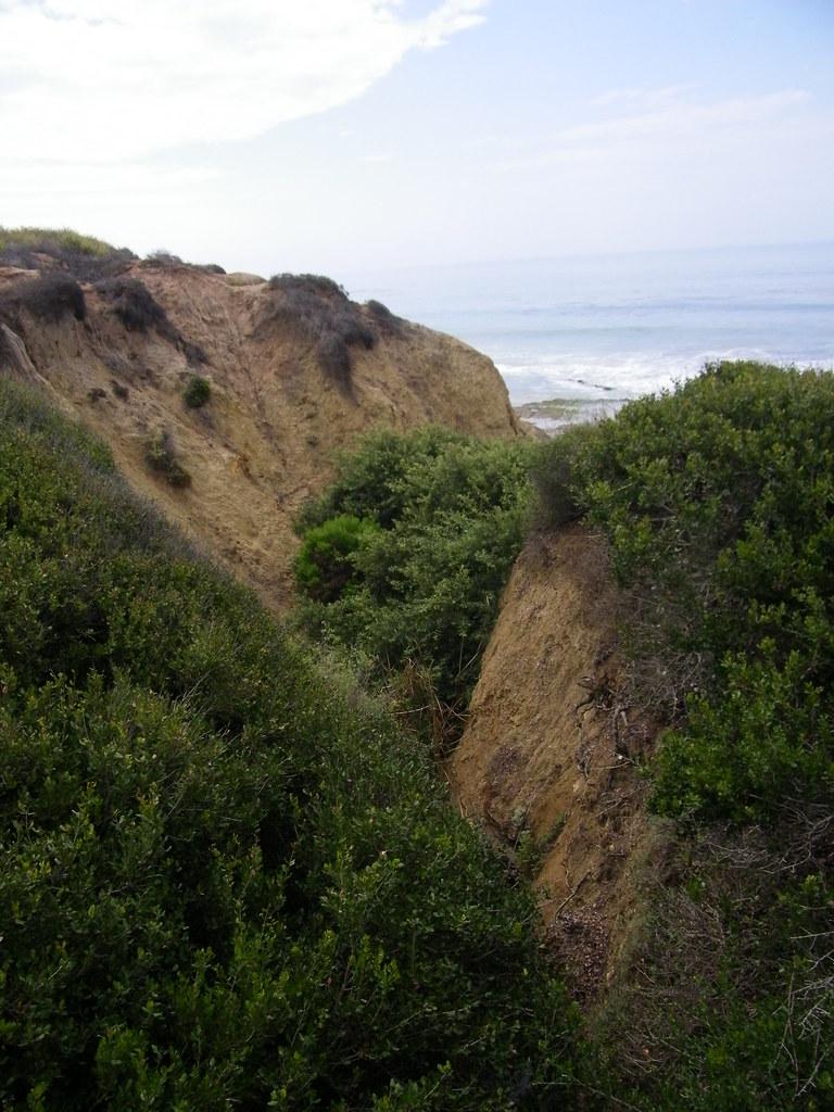 Beach Near Laguna