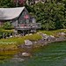 Cottage~Damariscotta River