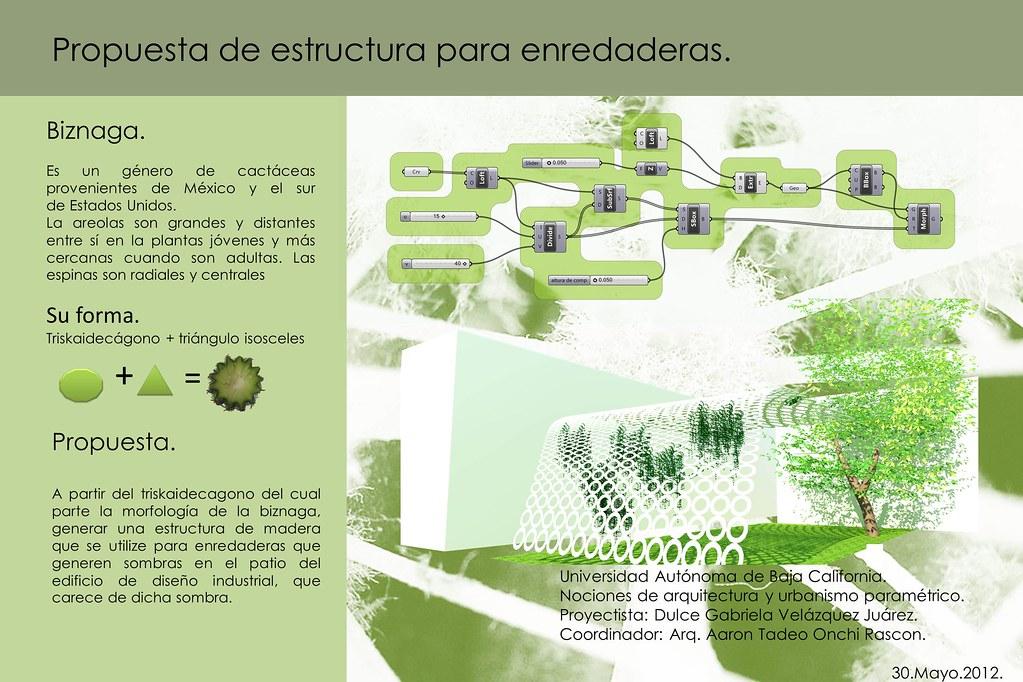 Naup Dulce Velazquez 2012 1 Proyecto Final De Curso