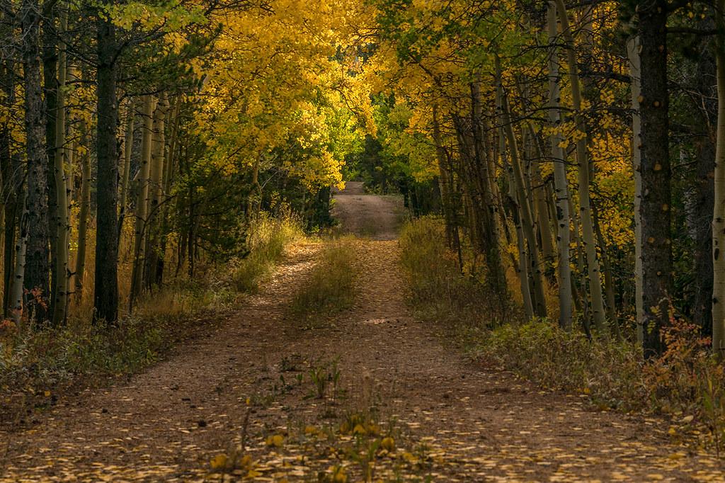 Boulder County/Larimer County Line, Colorado