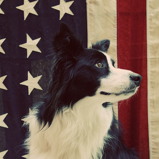 Turbo wishes you a happy 4th! | by Geninne