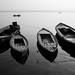 The Ganges, Varanasi, India