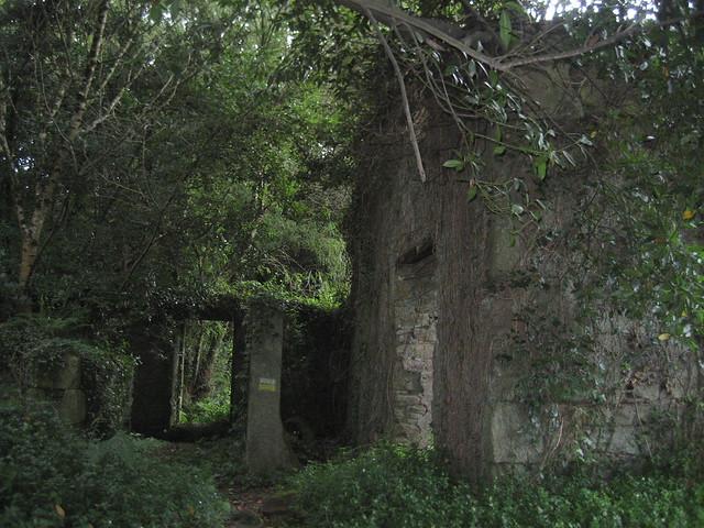 Papelera abandonada en la Ruta dos ríos Vilacoba e San Xusto