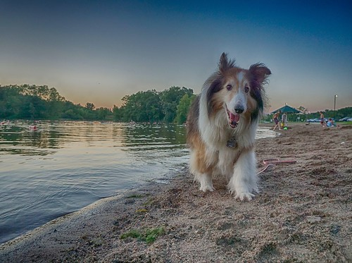 Cupcake at Schultze Lake