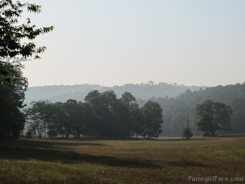 (18-15) Morning in the hayfield, one of my favorite views on the farm | by Farmgirl Susan