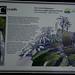 Sign, Cairns Botanic Garden, Cairns, QLD, 06/07/12