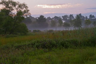 Summer Morning | by Bud in Wells, Maine