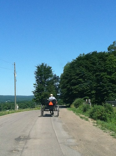 Amish carriage | by fondofsnape
