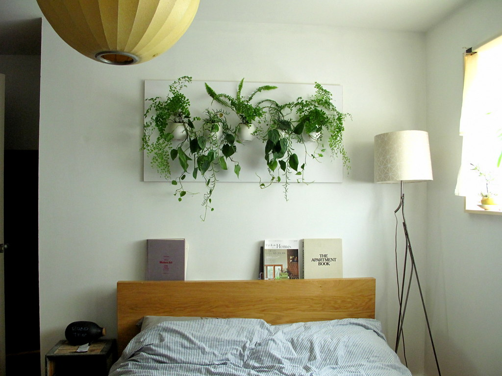 Bedroom-wall Hanging Plants
