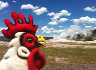 Felted Chicken Head at Old Faithful in Yellowstone | by Always Sugar Coated