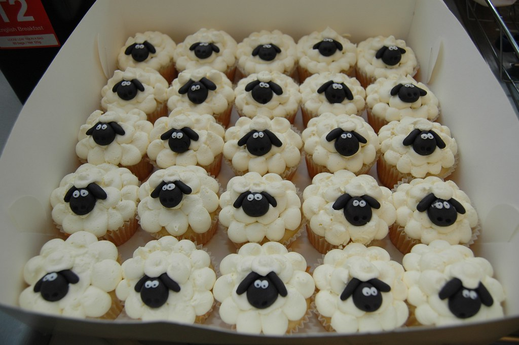 Sheep Cupcakes Sheepies Black Fondant Faces All