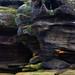 Brimham Rocks, North Yorkshire