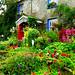 Cottage garden at Millthrop.