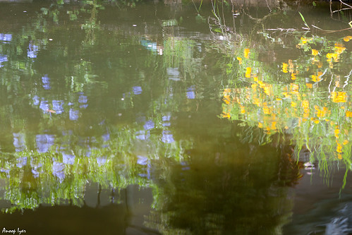 Imitating Monet | by Anoop & Shraddha Iyer