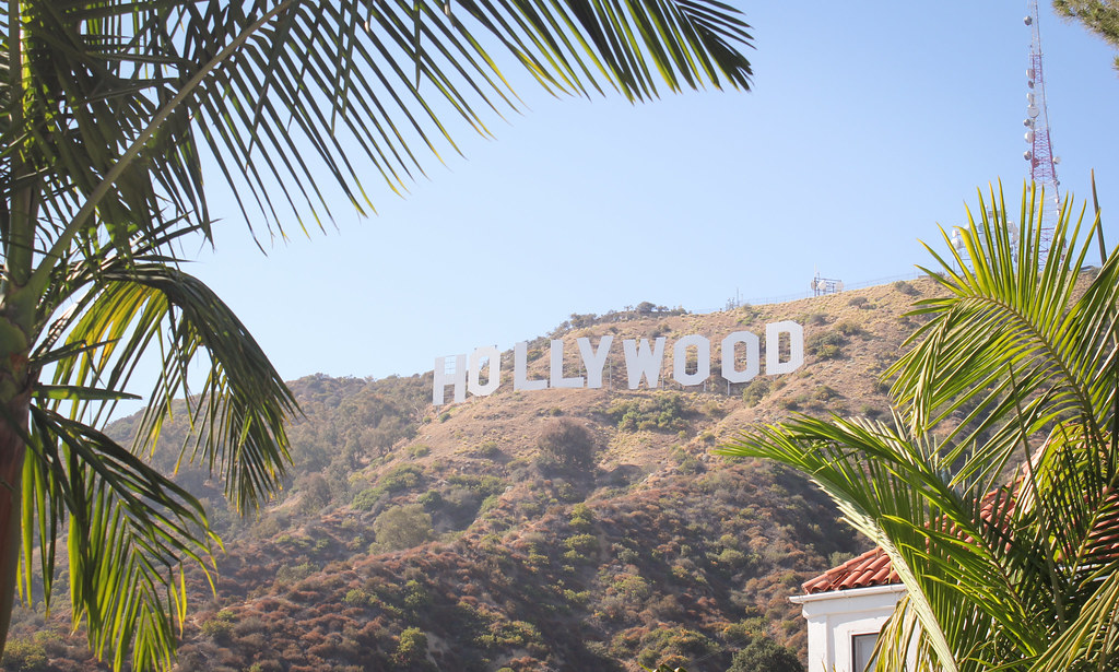 Palm Trees Hollywood Hollywood Sign Through Palm