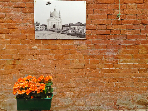 Venice Brick Wall | by Anda74