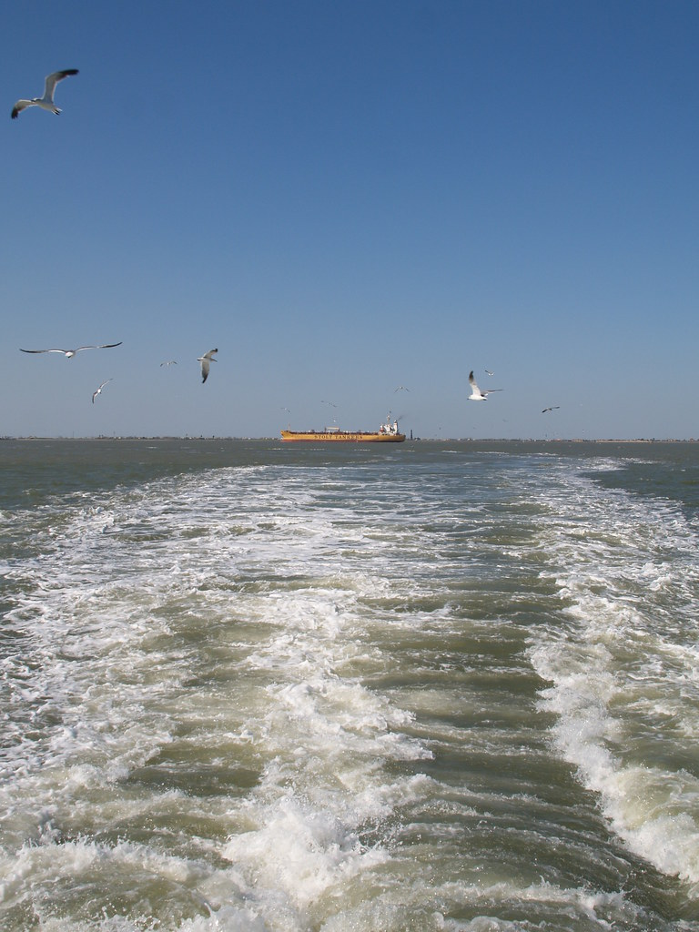 Ferry In Galveston Island