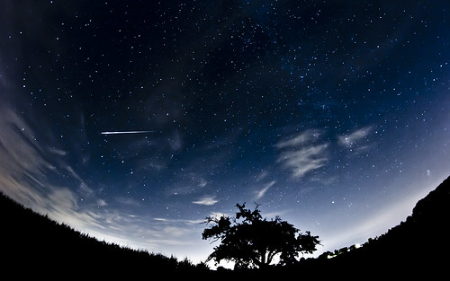 shooting_star | by betwo23