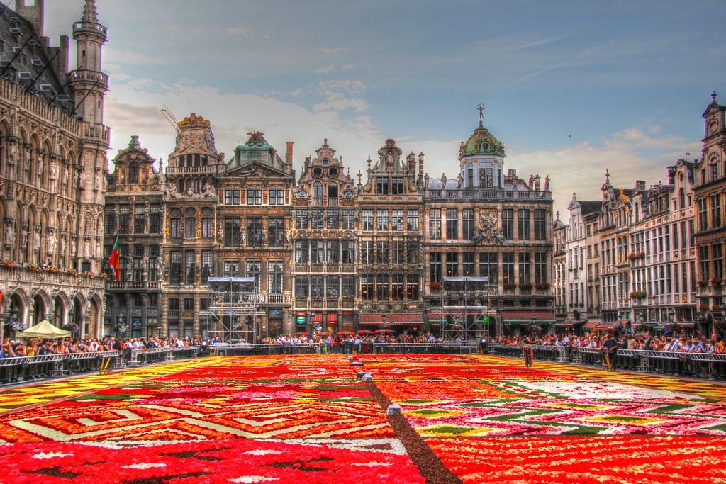 belgique bruxelles grand place tapis de fleurs 2012 flickr