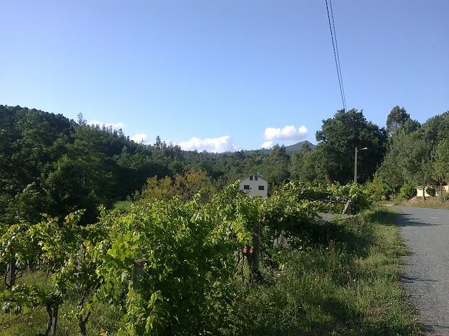 Pista en la ruta de los molinos de Vedra